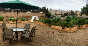 cpc-centella-garden1